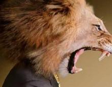 testa leone mascotte