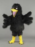 mascotte corvo nero
