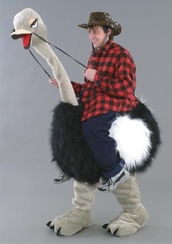 cavalcatura struzzo