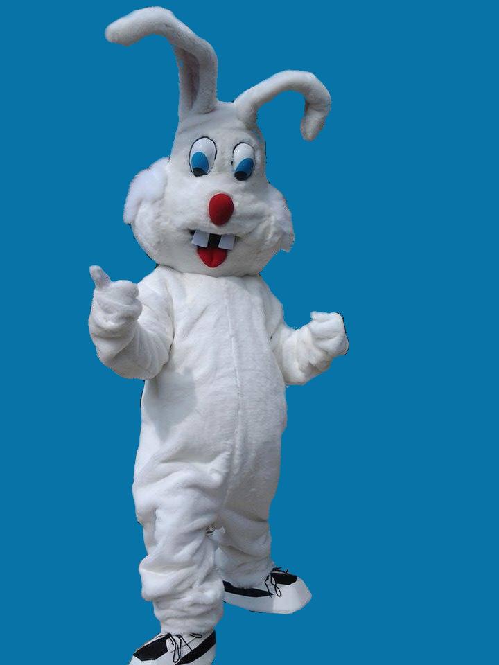 Mascotte coniglio realizzata per squadra di Basket ASD Janus